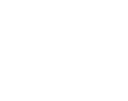 Wego Planet Logo white