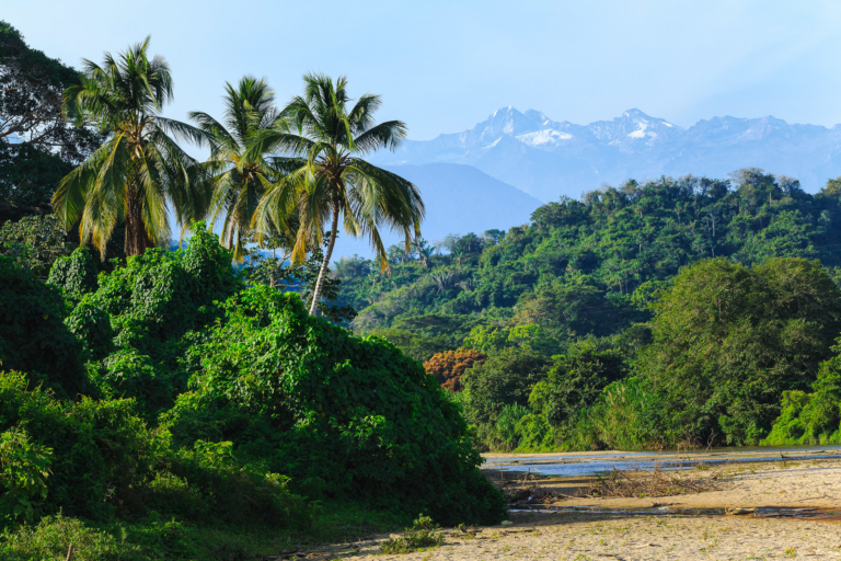 Palomino Colombia : Complete Travel Guide